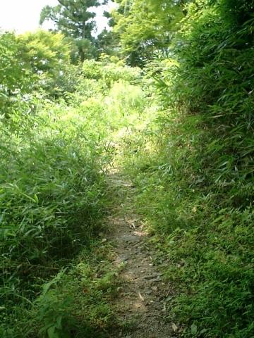 自転車の 車 自転車 時間差 : STAY GREEN 旅写真「2005/8/5 嵐山 ...
